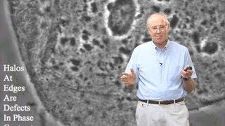 Microscopy: Darkfield and Phase Contrast Microscopy (Edward Salmon)