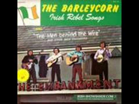 A Song For Ireland - Barleycorn