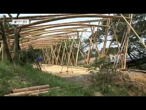 Casas en bambu guadua