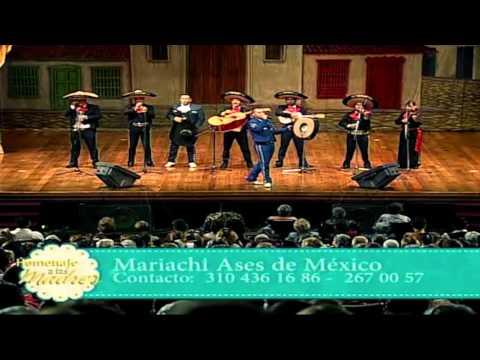 CANTO A LA MADRE - MARIACHI ASES DE MEXICO- MARIACHIS EN MEDELLIN
