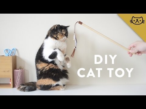 Uploaded by pudgethekitten for Diy cat wand