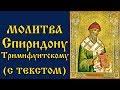 Молитва Святителю Спиридону Тримифунтскому Аудио С Текстом и Иконами mp3
