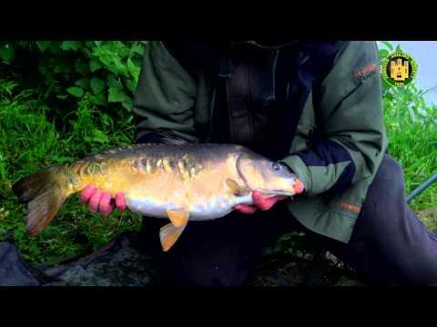 рыбалка бриньковская свежие новости