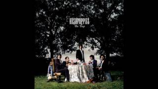 Watch Hushpuppies Sorry So video
