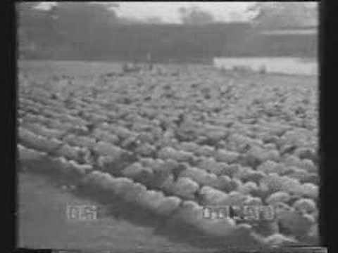 Pada akhir tahun 1942, diselengarakanlah perayaan Idul Fitri. Perayaan ...