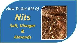 how to get rid of nits - Salt, Vinegar & Almonds