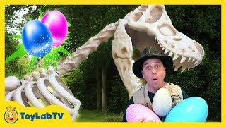Giant T-Rex Dinosaur Surprise in Kids Dinosaurs Toy Opening