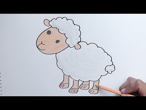 Dibujando y pintando cordero youtube - Como decorar un dibujo de una castana ...