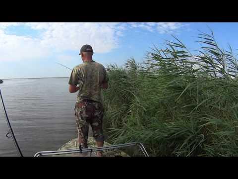 ловля судака в темрюке видео