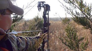 CRAZY STALK ON A GIANT BUCK! - Hunt Breakdown | Public Land Bowhunting