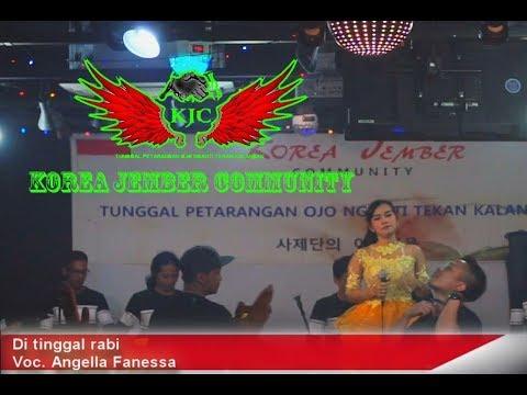 Download Lagu DI TINGGAL RABI BY ANGGELA FANESSA KDS MP3 Free