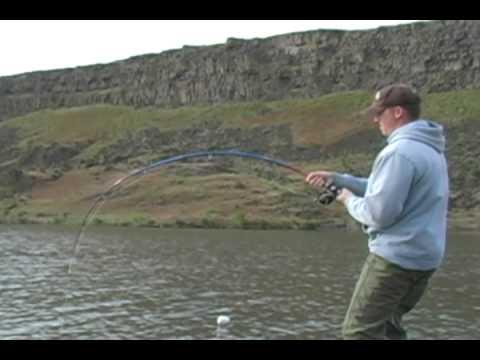 Monster Sturgeon Fishing