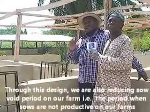 TV Interview with a Pig Farmer in Nigeria 2 - Pig Housing