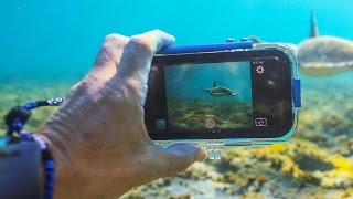 Jump into the deep end—with your phone.