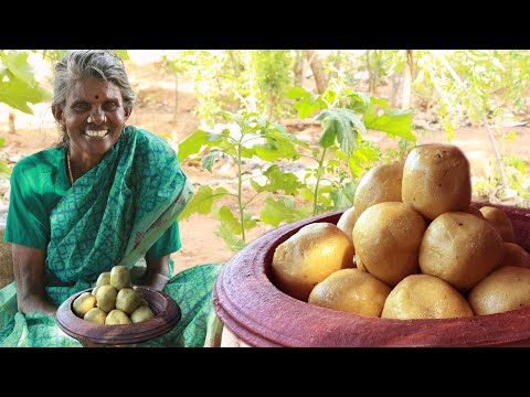 கிராமத்து சமையல் பொட்டுகடலை உருண்டை / Pottukadalai Urundai Recipe in Tamil /  Periya Amma Samayal