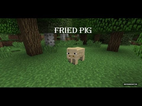 Обзор модов на minecraft  # 4 Fried Pig