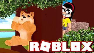 Normal Ones and Weird Ones - Roblox Find the Doges - DOLLASTIC PLAYS!
