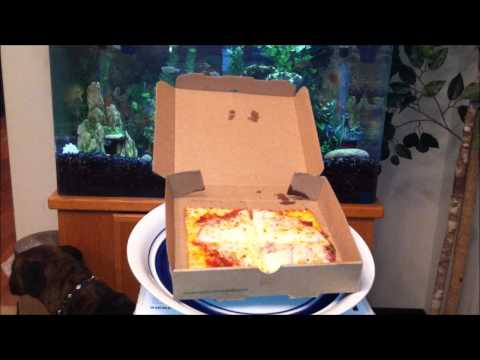Subway Spicy Italian Flatizza Review