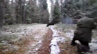 wild boar hunting. Снайпер на охоте,охота на кабана.(прикол)