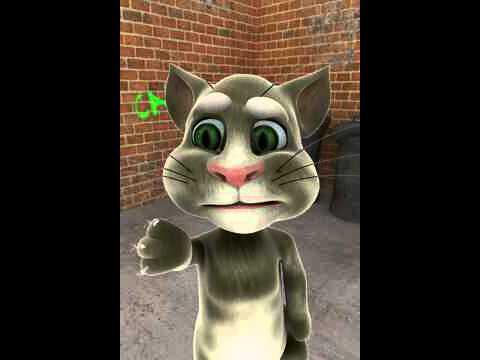 Talking Tom hola gato tonto