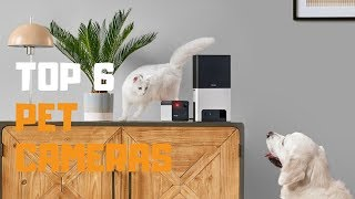 Best Pet Cameras in 2019 - Top 6 Pet Cameras Review
