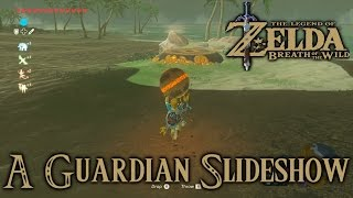 Zelda Breath Of The Wild Playthrough: Guardian Slideshow, Shoqa Tatone Shrine