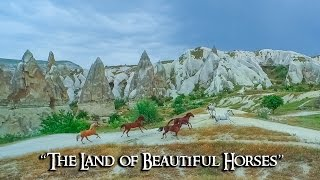 "Cappadocia / Kapadokya ""The Land of Beautiful horses"""