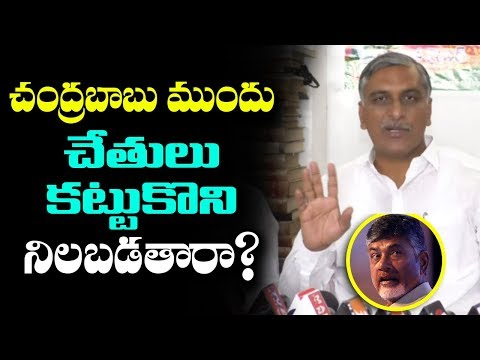 TRS About Congress Meeting With Chandrababu | Harish Rao Criticize Uttam Kumar Reddy | mana aksharam