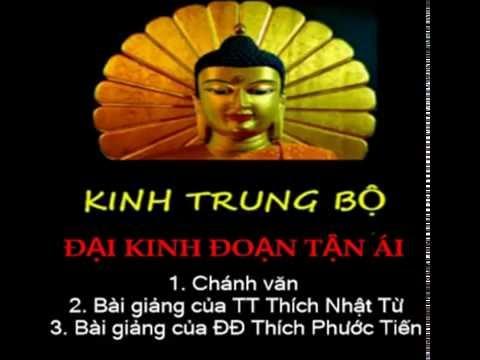 Kinh Trung Bộ - Đại kinh đoạn tận ái. MP3