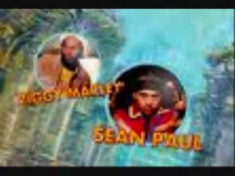 3 Little Birds REMIX By: Sean Paul & Ziggy Marley