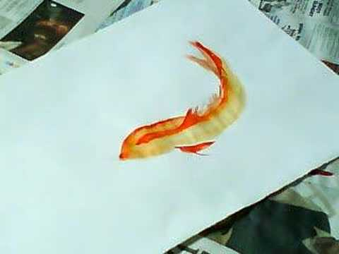 quick chinese koi ink painting