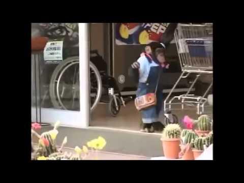 Chú Khỉ Thông Minh Phiêu Lưu Ký 25