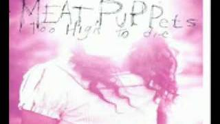 Watch Meat Puppets Why video