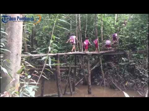 Potret Pendidikan di Pedalaman Sekadau, Kalimantan Barat