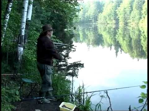 рыбалка в отрадное московская область отзывы