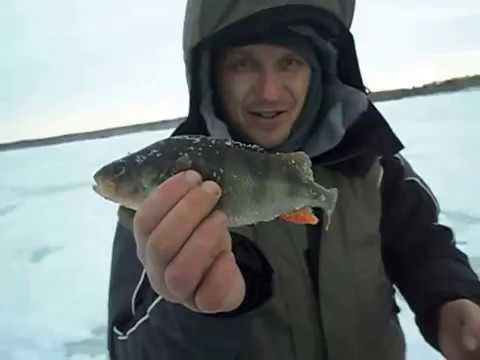 рыбалка в челябинской области аргази