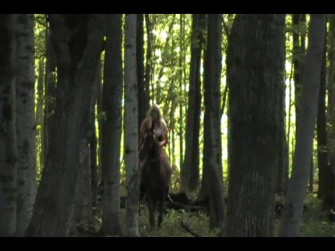 Little Red Riding Hood & Stallion, Fantasy Forest Ride