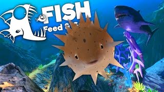 Cutest Giant Puffer Fish Ever! - Feed and Grow Fish Gameplay