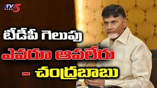 AP CM Chandrababu Very Confident Over TDP Victory In AP Elections | TV5News