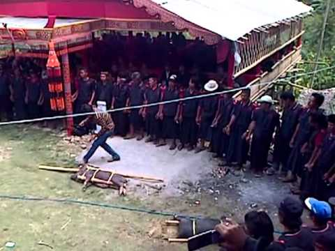 Video Pesta Adat Kematian Suku Toraja