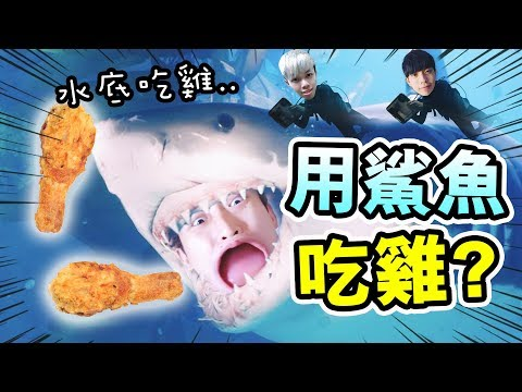 【利用鯊魚殺人吃雞!?】Subnautica版pubg?潛水大逃殺Last Tide!ft. Dee, Moyung