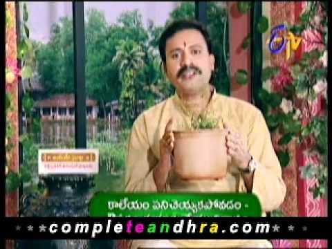 CompleteAndhra.com – Liver Dysfunction Symptoms, Causes, Natural Treatments 1 Photo Image Pic