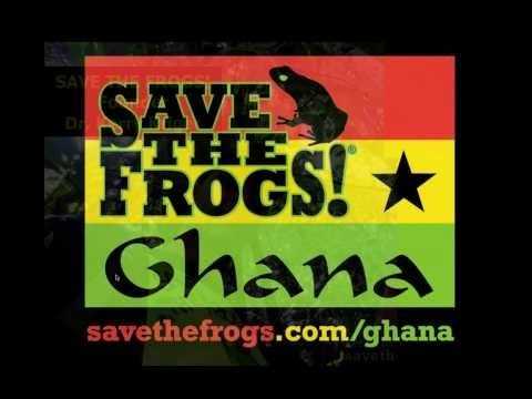 Threats To Ghana's Frogs - SAVE THE FROGS! Academy