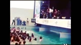 Los GEMELIERS se tiran a la piscina en un concierto
