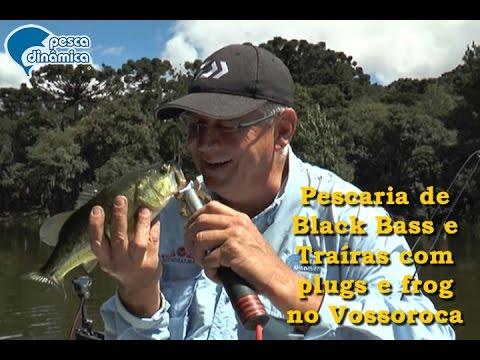Pescaria De Black Bass E Traíras