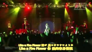 初音ミク新加坡演唱会(附中文字幕)21.Fire◎Flower