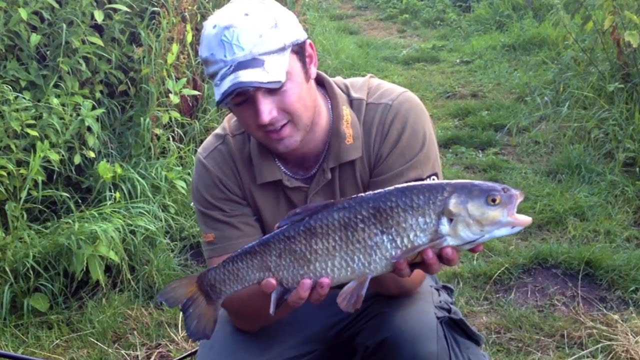 Chub fishing on the river wensum youtube for Richard bowling fishing report