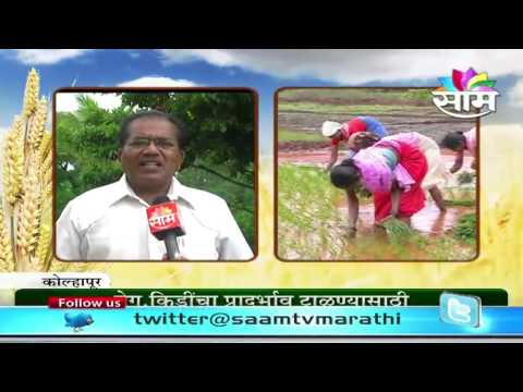 Pandurang Mohite on care of crop during kharif season
