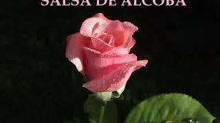 Download lagu SALSA DE ALCOBA  ROMANTICA (GRANDES EXITOS)2020