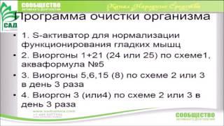 Мухомор  Виоргон 22 Т  Севостьянова, врач терапевт высшей категории 1